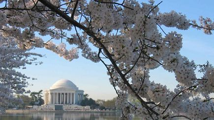 5 Day East Coast: New York, DC & Niagara Falls from D.C. (Without Airport Transfer)